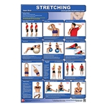 Stretching Chart - Upper Body