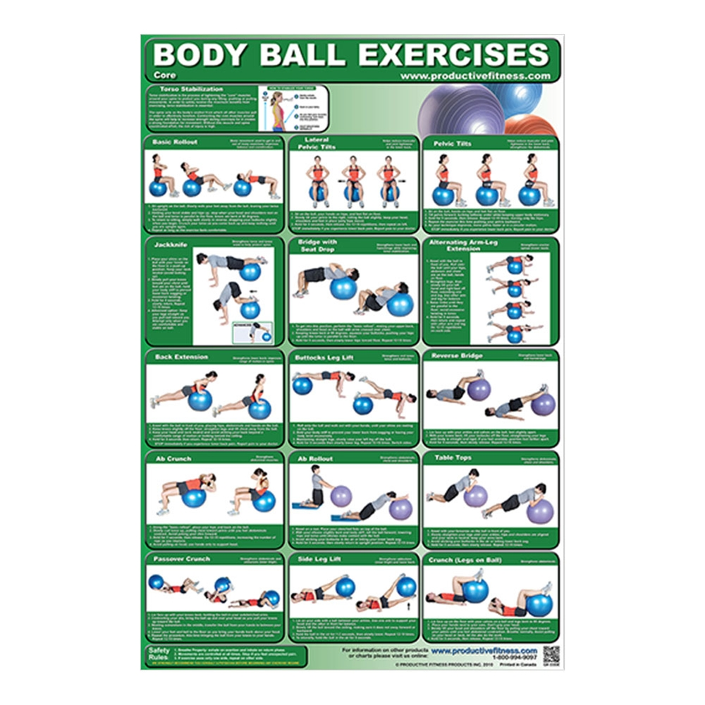 exercise chart provide clear instructions with a body ball