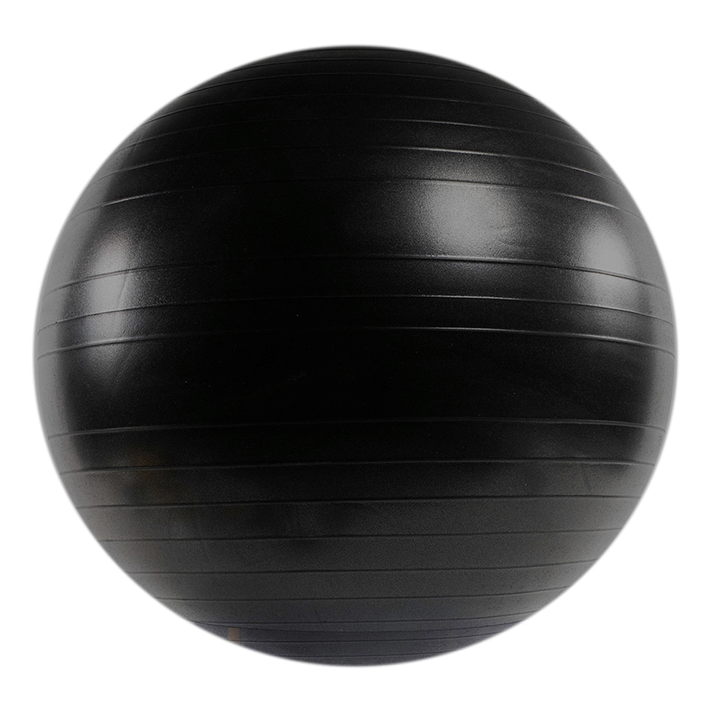 When you need firm support under heavy loads, choose the VersaBall® PRO. It's designed for dynamic workouts that incorporate moderate levels of resistance.