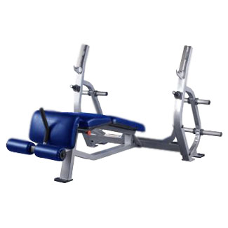 Pro Maxima PLR-300 Olympic Decline Bench w/ Weight Storage