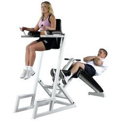 Pro Maxima PL-70 Dual Abdominal and Dip Station