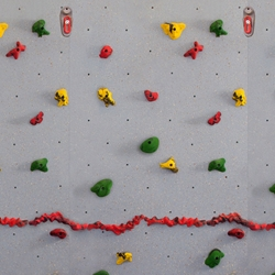 INOpets.com Anything for Pets Parents & Their Pets Standard Traverse Climbing Wall
