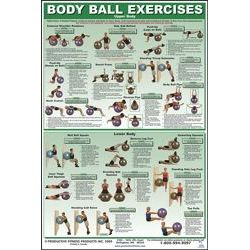 Body Ball Exercise Chart - Upper/Lower Body